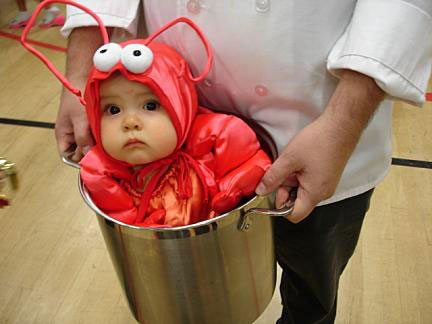 http://kecute.files.wordpress.com/2007/10/baby-lobster.jpg